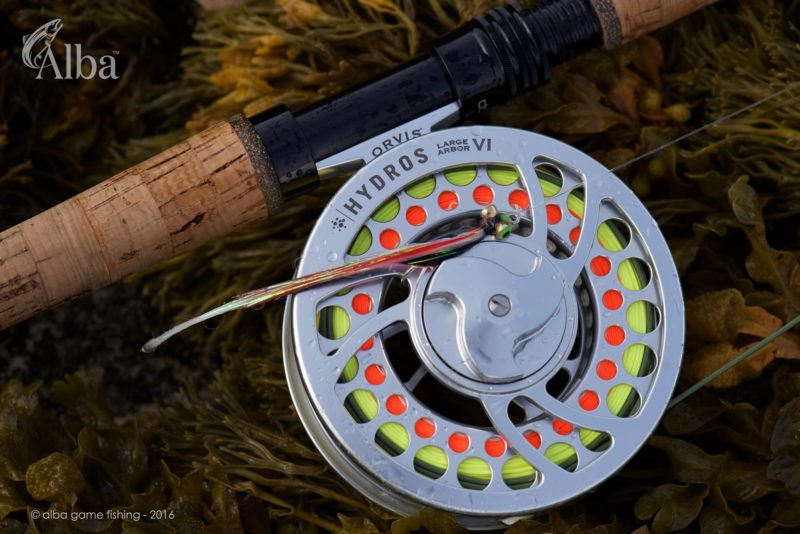 Fly fishing, pollock, Alba Game Fishing