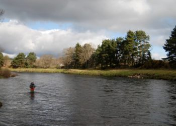 salmon fishing River Dee, Raemoir fishing, hotels near River Dee