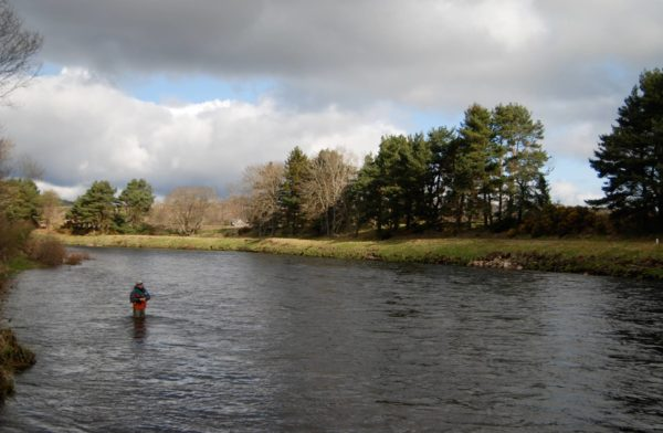 salmon fishing River Dee, Raemoir fishing, hotels near River Dee