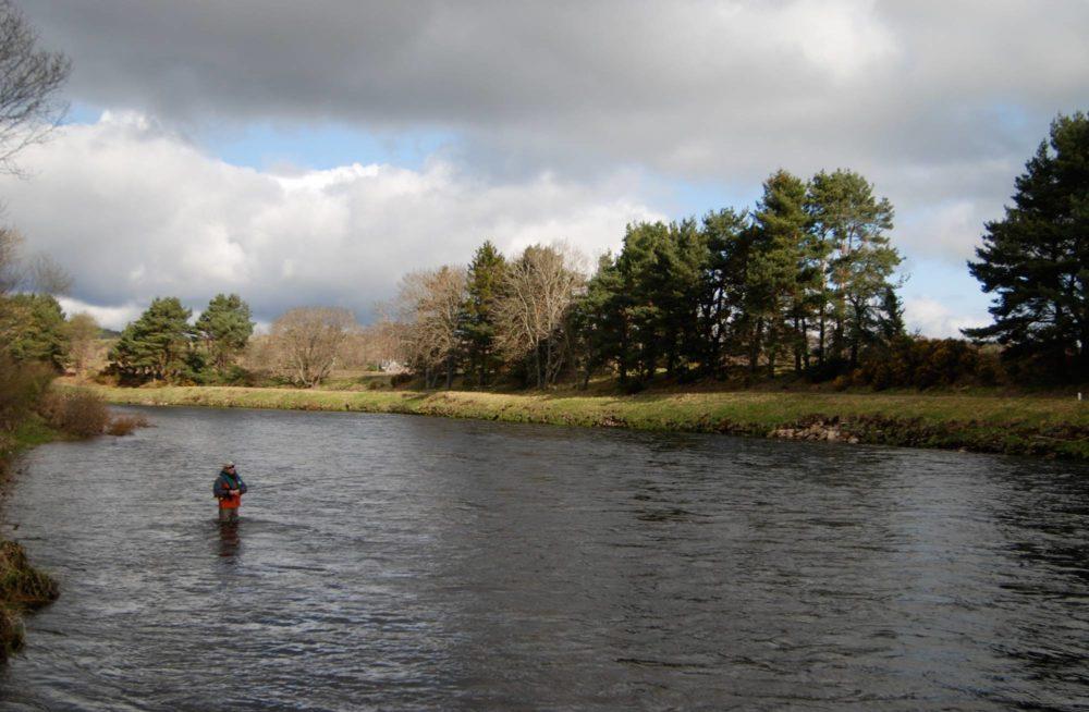 Salmon fishing trips river dee near aberdeen for Fly fishing supplies near me