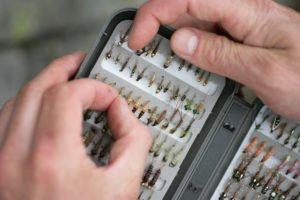 trout flies, river Tweed, river fishing, wade fishing, Scotland