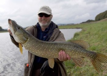 pike fishing, edinburgh, Alba Game Fishing guides, Steve, best fishing near Edinburgh