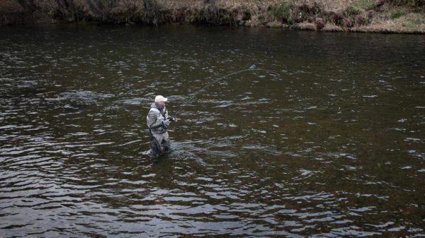 Guided grayling fishing Scotland