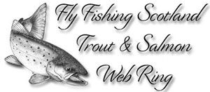 Barrio fly lines, best fly lines,