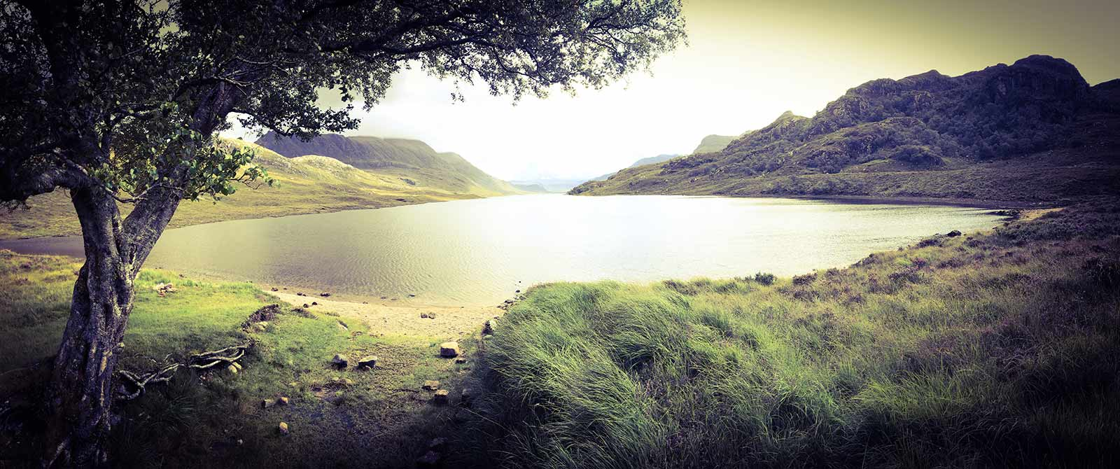 trout lochs, fly fishing, wild brown trout, sea trout, NC500, fishing guide