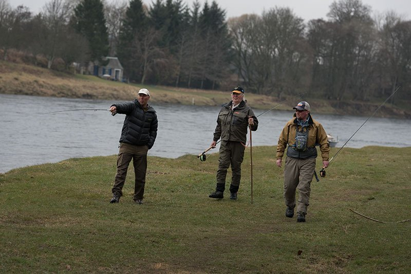 wild brown trout, dry fly, river tay, orvis guide, alba game fishing, olive fly